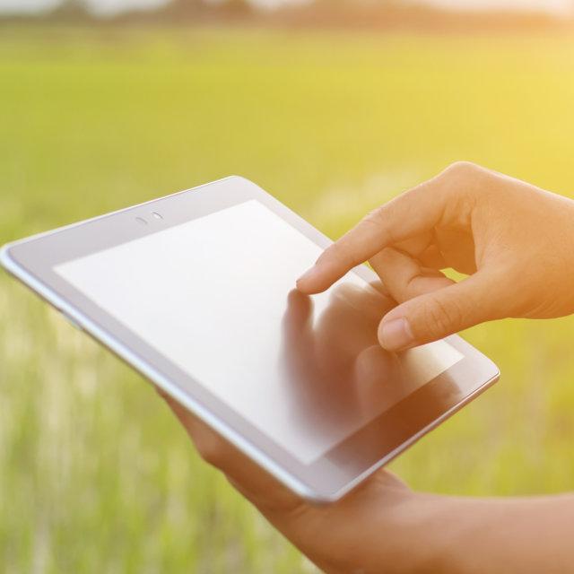 Arroz de Valareña: de la cooperativa a la venta online