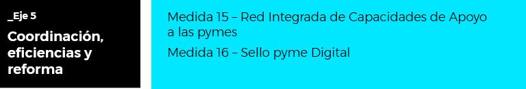 Plan digitalización de PYMES 2021-2025 - Eje 5