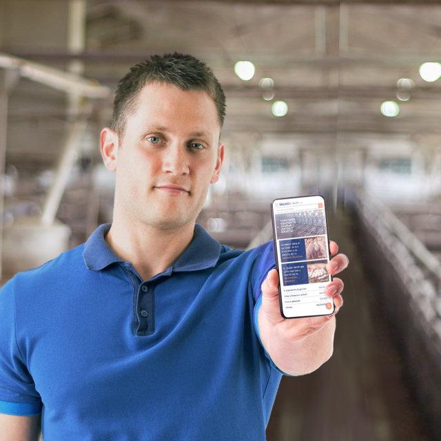 Macoga se reinventa para servir al ganadero de porcino online